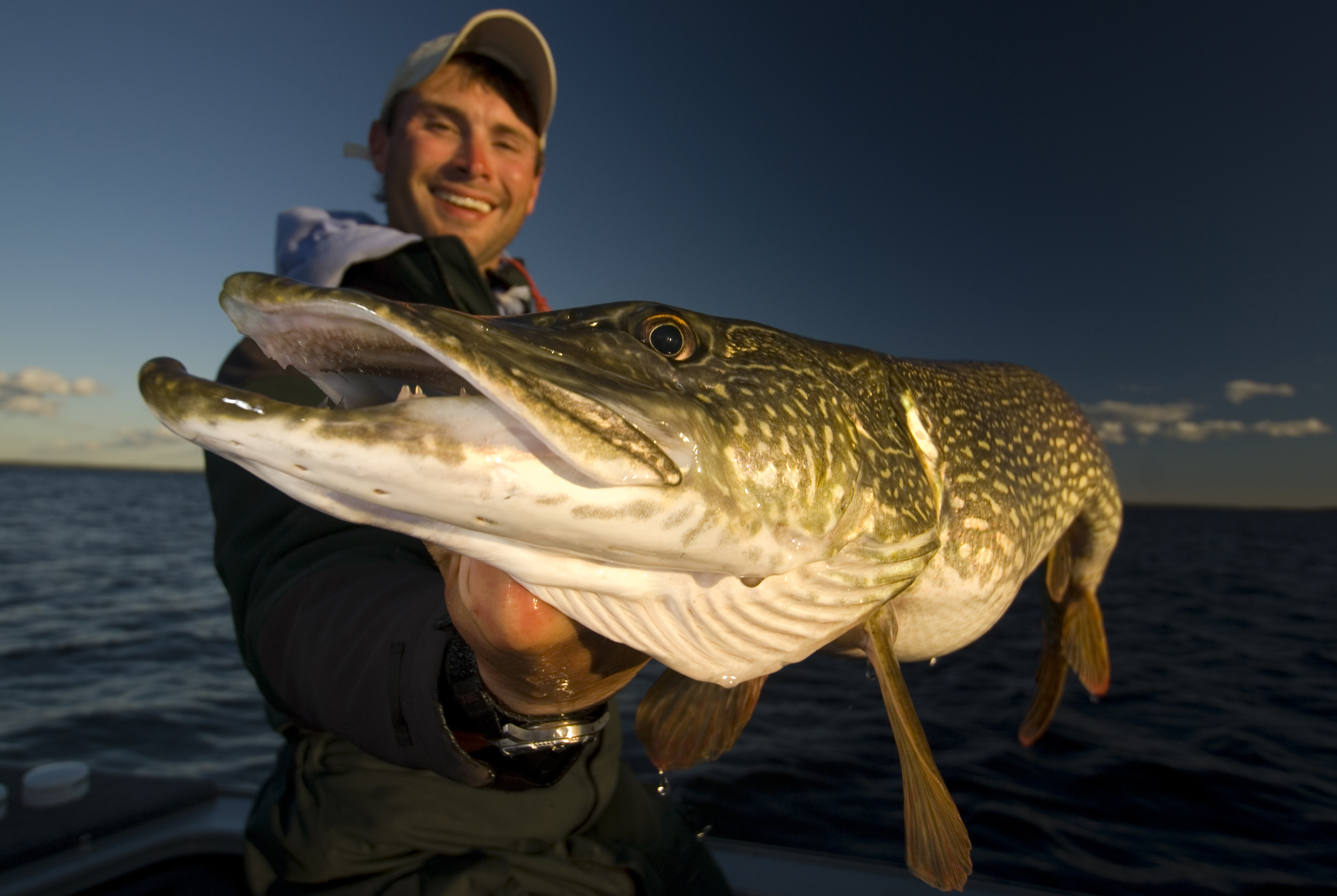 Northern pike sunset country ontario canada for Northern pike fishing