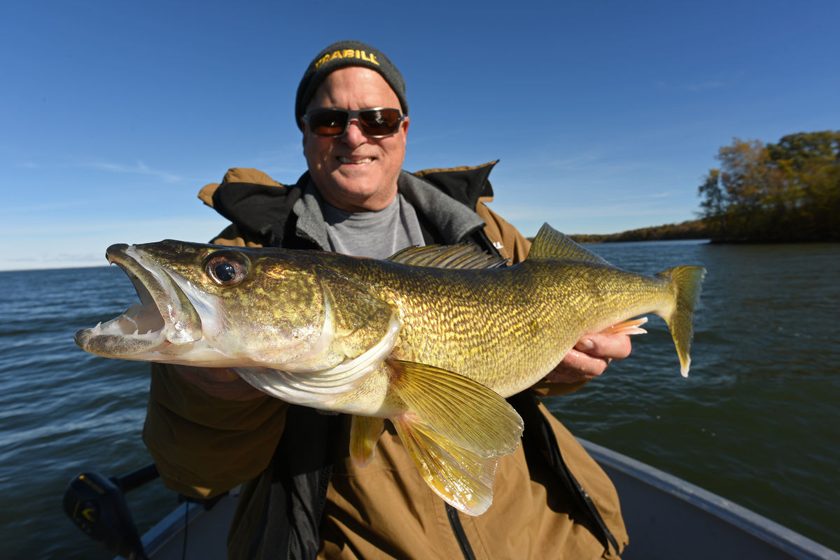Big Ontario walleye