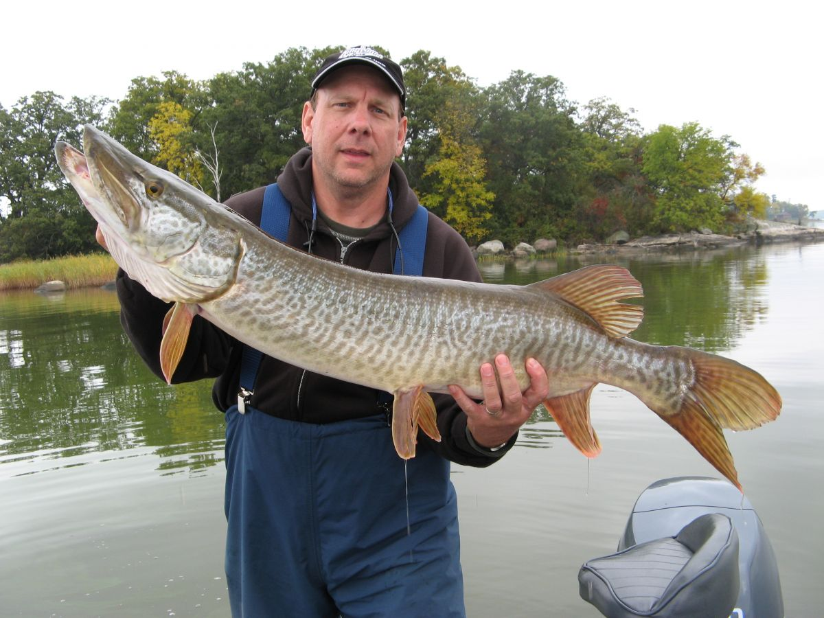 Muskie Fishing on Lake of the Woods