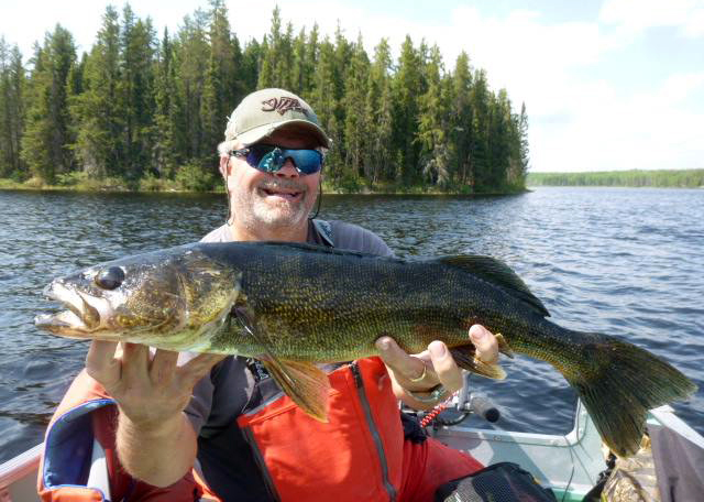 Walleye fishing on Uchi Lake Lodge