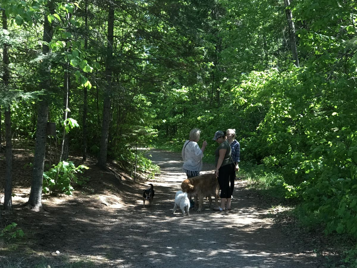 Hiking Trails in Kenora