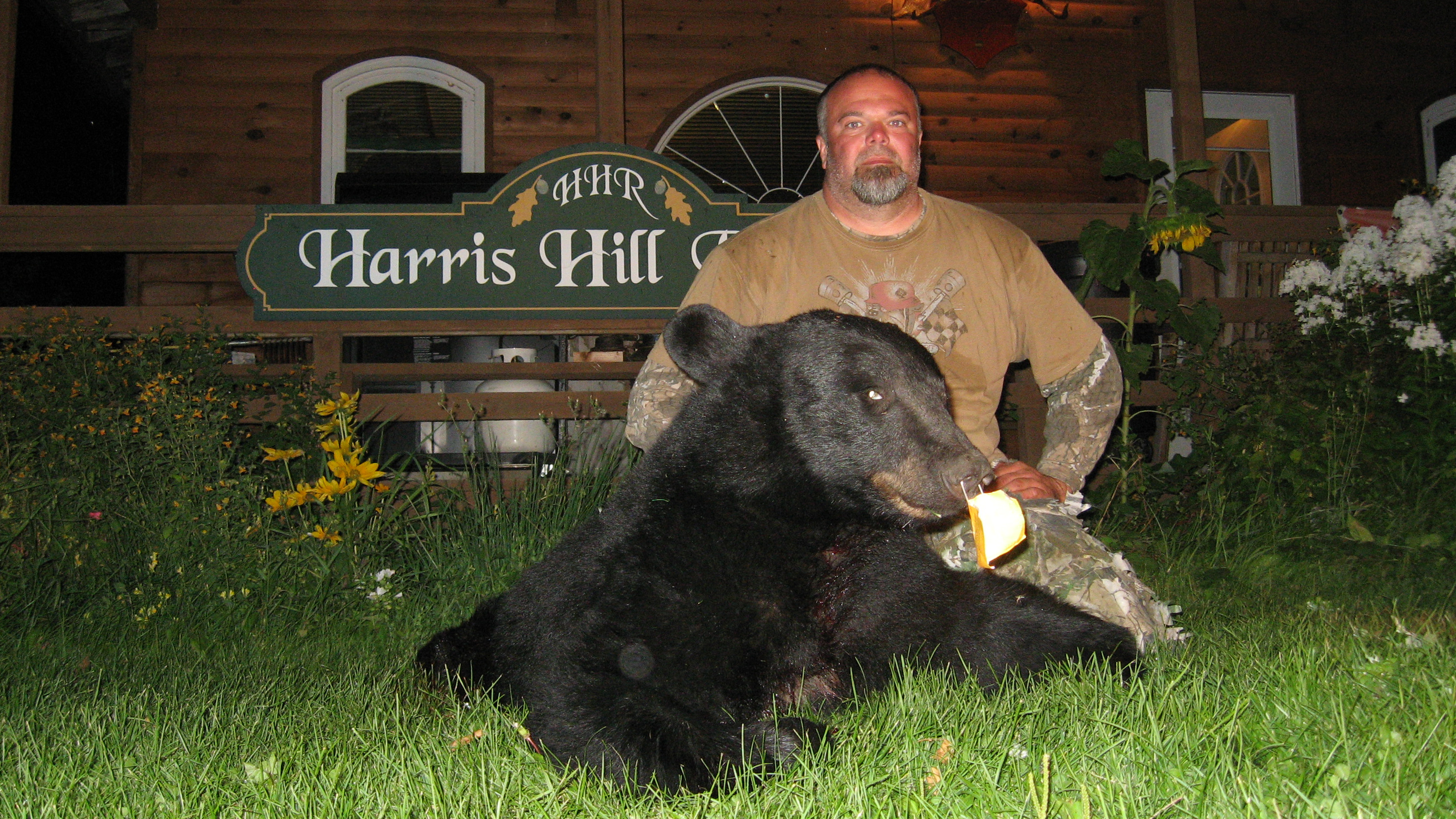 Bear hookup site